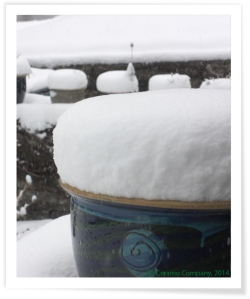 Malaysian Pots in Snow